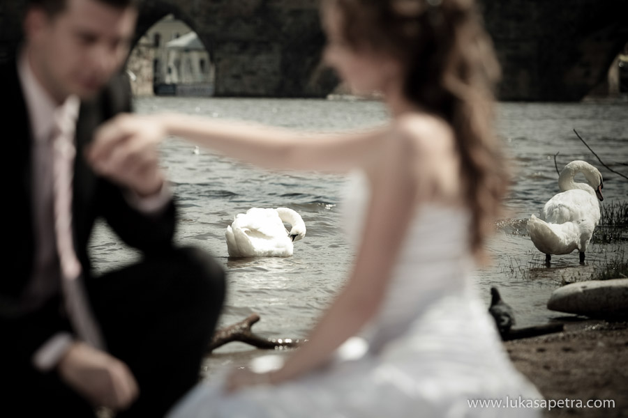 svatební-fotografie-momenty-032