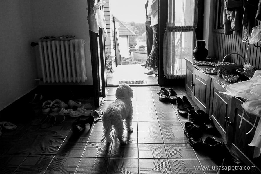 svatebni-fotografie-2013-010